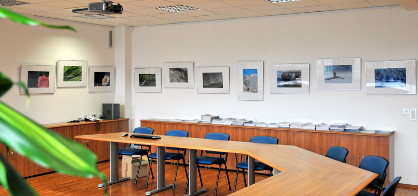 Sedma fotografska razstava v galeriji Elsing galerija elsing