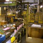 Električne inštalacije, kemična industrija